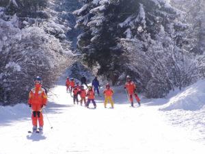 Corsi di ski